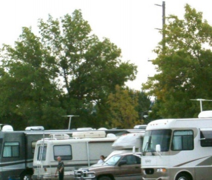 RVs parked side by side under some trees